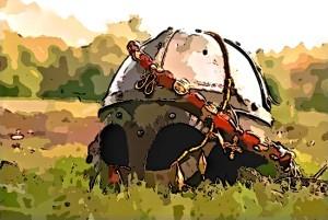 wiking helm
