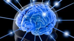 intelekt mozg