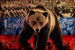 rosja niedźwiedź