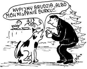 Burek2