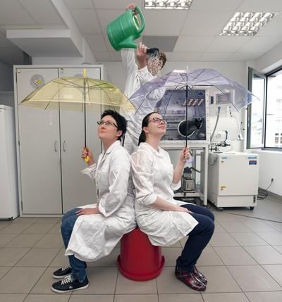 """ZnO quantum dots prepared bythe Institute of Physical Chemistry of the Polish Academy of Sciences in Warsaw are stabilized byimpermeable protective """"umbrellas"""" – coatings built of organic compounds. Starring as shining quantum dots: Dr. Agnieszka Grala and PhD student Malgorzata Wolska-Pietkiewicz. (Source: IPC PAS, Grzegorz Krzy¿ewski) Kropki kwantowe zInstytutu Chemii Fizycznej PAN wWarszawie zachowuj¹ zdolnoœæ doœwiecenia, poniewa¿ s¹ dobrze stabilizowane ochronn¹ otoczk¹ – """"parasolem"""" zbudowanym zezwi¹zków organicznych. Wroli kropek kwantowych b³yszcz¹: drAgnieszka Grala idoktorantka Ma³gorzata Wolska-Pietkiewicz. (ród³o: IChF PAN, Grzegorz Krzy¿ewski)"""