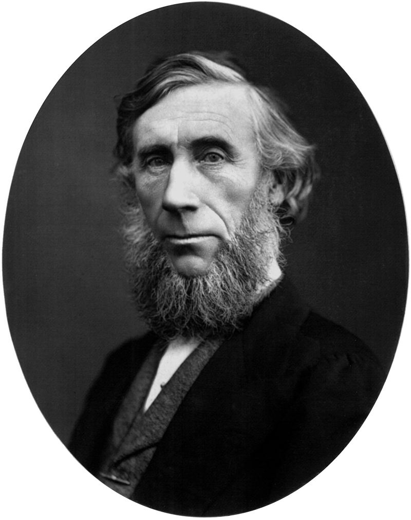 https://upload.wikimedia.org/wikipedia/commons/thumb/4/46/John_Tyndall_%28scientist%29.jpg/800px-John_Tyndall_%28scientist%29.jpg