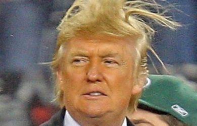 https://tse1.mm.bing.net/th?u=http%3a%2f%2fmedia.boingboing.net%2fwp-content%2fuploads%2f2015%2f07%2ftrump-hair.jpg&ehk=mHWXUQ1B9Tl3Nmtpb%2fB07A&r=0&pid=OfficeInsert