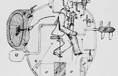 https://upload.wikimedia.org/wikipedia/commons/3/3d/Turtle_sketch_1885.jpg