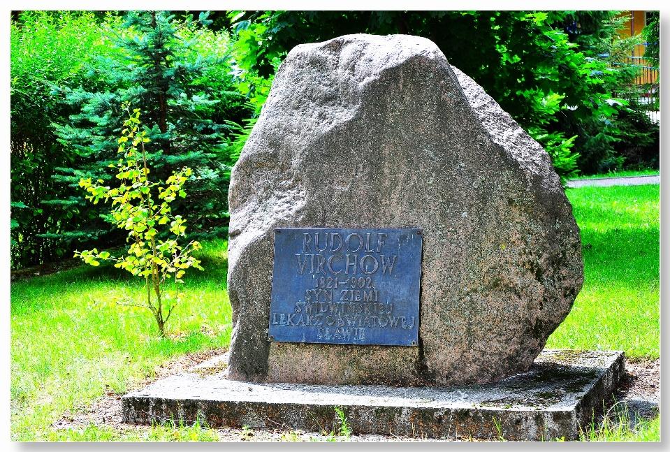 https://upload.wikimedia.org/wikipedia/commons/6/6c/Erinnerungsstein_und_Denkmal_f%C3%BCr_den_Arzt_Rudolf_Virchow_in_78-300_Swidwin_%28Schivelbein%29.jpg