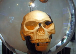 https://upload.wikimedia.org/wikipedia/commons/thumb/1/17/Sterkfontein_Piltdown_man2.jpg/1024px-Sterkfontein_Piltdown_man2.jpg