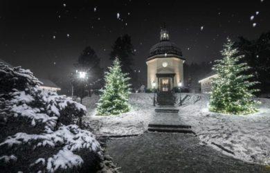 Obraz zawierający zewnętrzne, śnieg, drzewo, podłoże Opis wygenerowany przy bardzo wysokim poziomie pewności