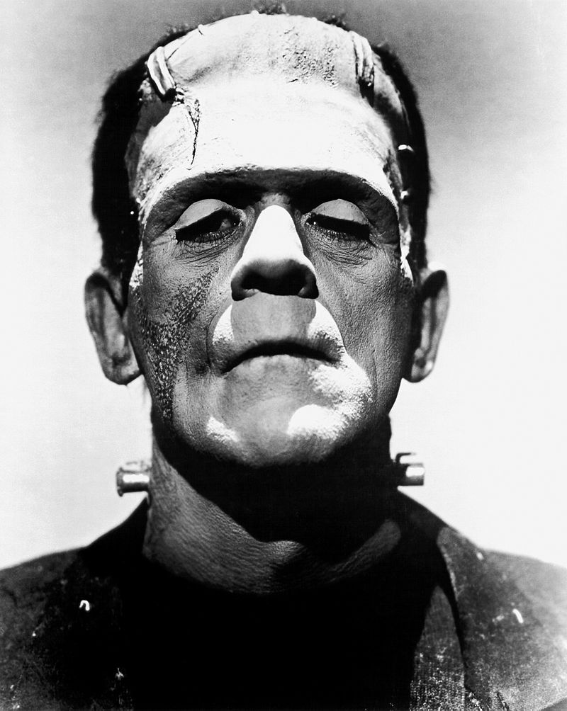 https://upload.wikimedia.org/wikipedia/commons/thumb/a/a7/Frankenstein%27s_monster_%28Boris_Karloff%29.jpg/800px-Frankenstein%27s_monster_%28Boris_Karloff%29.jpg