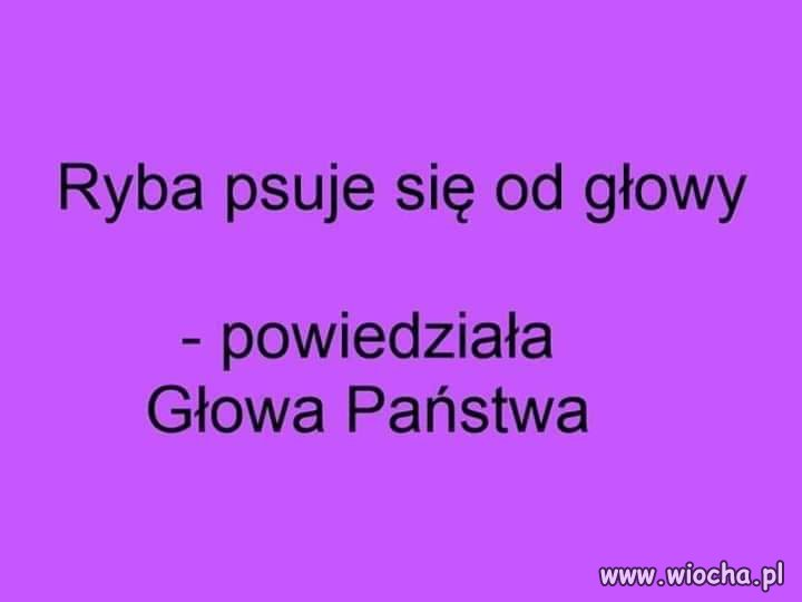 C:\Users\Piotr\Pictures\Saved Pictures\Duda 1.jpg
