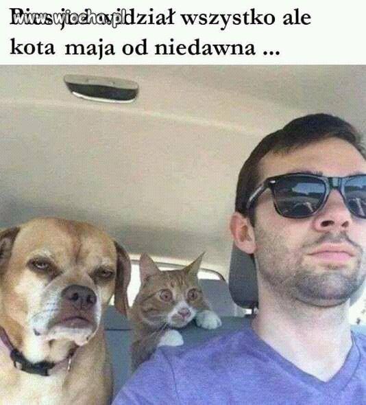 C:\Users\Piotr\Pictures\Na 1 kwietnia\kot ipies.jpg